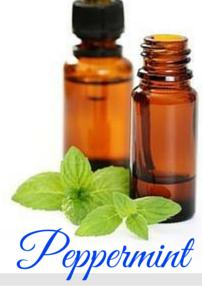 peppermint essential oils for softball